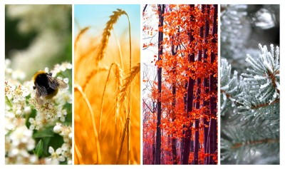 10 Yetis Insight Blog - PR Through The Seasons
